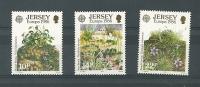 AÑO 1986 - EUROPA - Jersey