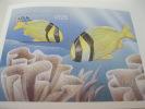 Maldives-Fish-Marine Life - Fische