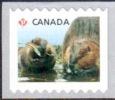 Canada - Castors ** - Roulette Horizontale - 2014 - Roulettes