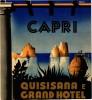 2 Hotel Labels ITALY ITALIE  CAPRI    La plus belle ILE du Monde   Grand Hotel  Illustr Zan Impr Richter