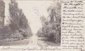 Pennsylvania Philadelphi Hamilton Walk University Of Pennsylvania 1906 - Philadelphia