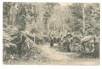 S3485 - Gruss Aus Kamerun - Eingeborenen-Niederlassung Im Urwald - Cameroun