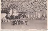 KAMEROUN, WESTATRIKANISCHE PTLANZUNGS-GESELLSCHATT...VIKTORIA    AK 1919 - Komoren