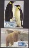 India  2009  Polar Bear  Penguins  Preserve The Polar Regeons & Glaciers  2  Maximum Cards # 67463  Inde Indien - Preserve The Polar Regions And Glaciers