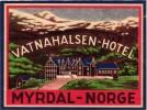 8 HOTEL LABELS NORWAY NORGE NORVEGE MYRDAL STALHEIM FEFOR LOEN MORCEDAL OSLO Nice Collection - Hotelaufkleber