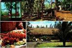 ILE MAURICE     H5     5vues , Les Beaux Hotels De L'océan Indien.Le Morne Brabant Et Le Chaland Hotel - Mauritius