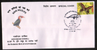 India  2008  Narcondam Hornbill  Birds  Port Blair  Special Cover  # 86593  Inde Indien - Songbirds & Tree Dwellers