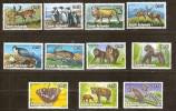 Cook Islands 1992 Yvertn° 1071-81 *** MNH Cote 27,50 Euro Faune - Cook