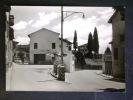 VENETO -TREVISO -TARZO -F.G. - Treviso