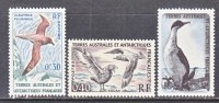 FSAT  12-4   **   FAUNA   BIRDS - Antarctic Wildlife