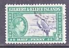 GILBERT  &  ELLICE  ISLANDS  40   (o)  FAUNA  BIRD - Gilbert & Ellice Islands (...-1979)