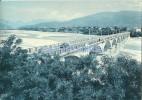 19605 ITALY BIGOLINO TREVISO BRIDGE ON THE PIAVE POSTAL POSTCARD - Non Classificati