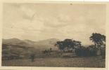 Ruanda-Urundi - Environ D´ Astrida  - 68 - Ruanda-Urundi