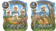 Mozambico 2015, Giraffes, 4val in BF +BF