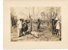 Photo Cameroun - A Identifier  ( Retour  Chasse   ) - Afrique
