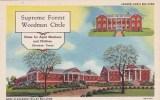 Texas Sherman Supreme Forest Woodmen Circle  Pennsylvania Building Dora Alexander Talley Building - Etats-Unis
