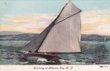 New Jersey Atlantic City Yachting At Atlantic City