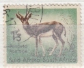South Africa 1961 - Zuid-Afrika (...-1961)