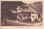 AK Schwarzwaldhaus - No. 13  (18928) - Allemagne