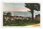 Cp , 14 , HOULGATE , Vue Panoramique , Voyagée 1950 , Ed : C.a.p. 56 - Houlgate