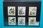 Heilpflanzen, Medizin, Arznei, Polen 1980 ** (b337) - Pharmacie