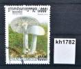 Pilze, Mushrooms, Frühlings-Knollenblätte Rpilz, Amanita Verna, KH 2000 (kh1782) - Cambodge