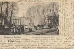 BRUXELLES  : Souvenir De Bruxelles - Palais De La Nation Et Le Parc - Nels Série 1 N° 65 - - Forêts, Parcs, Jardins