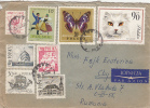 SHIPS, ACADEMY, MAP, FOLKLORE, BUTTERFLY, CAT, STAMPS ON COVER, 1970, POLAND - Briefe U. Dokumente