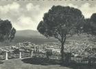 REGGIO CALABRIA  Panorama Dalla Balaustra - Reggio Calabria