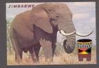USED/ UNUSED POSTCARD See Back - Zimbabwe