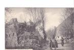 24862 LUXEMBOURG Monument Vallée Petrusse -griser 1238248 - Cartes Postales