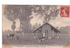 24873 EPERNON France  Domaine De La Savonniere, Prairie -ND 28 -vache Normande ?