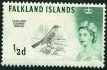 ISOLE FALKLAND, FALKLAND ISLANDS, COLONIA BRITANNICA, FAUNA, UCCELLI, BIRDS, 1960, NUOVO (MNH**), Scott 128 - Falkland Islands