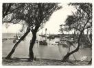 Cp, 17,Ile D´Oléron, Le Port De La Cotinière, écrite - Ile D'Oléron