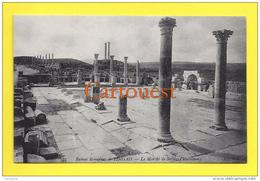 Algérie (Batna) TIMGAD - Ruines Romaines Le Marché De Sertius  TOP - Batna