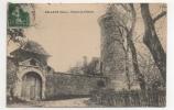 38 ISERE - SILLANS Entrée Du Château (voir Descriptif) - Altri Comuni