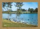 CPM  FRANCE  01 ~  VILLARD-les-DOMBES  ~  36  Parc Ornithologique De La Dombes : Oies Sauvages  ( Combier 1981 ) - Villars-les-Dombes