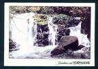 SURINAM  -  Sipaliwini  Curtain Falls  Used Postcard As Scans - Surinam
