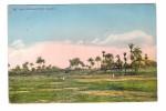 Nigeria Golf Port Harcourt Golf Course + Timbre Ecrite En 1904 - Golf