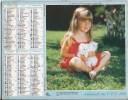 Calendrier Des Postes 1986 Département 69 - Tamaño Grande : 1981-90