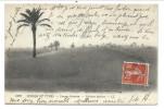 CPA - Afrique - Scènes Et Types - Paysage Saharien - Palmiers Dattiers - LL 6222   // - Postcards