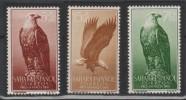 SAHARA ESPAGNOL - 1957 - *  -Y&T 139-141 - Child Welfare - Eagles - - Spanish Sahara