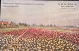 Putte-lez-Malines A Op De Beeck Fils - Putte