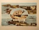 Carte Postale - ILES CHAUSEY (50) - Multi Vues (736/1000) - Altri Comuni