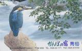 Télécarte Japon - Animal - OISEAU MARTIN PECHEUR - KINGFISHER Bird JAPAN Phonecard - EISVOGEL - 3994 - Japan