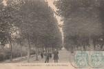 Ancenis - Allée De La Providence   - Scan Recto-verso - Ancenis