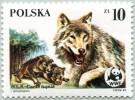 N° Yvert 2789 - Timbre De Pologne (1985) - MNH - WWF - Le Loup (Louve Et Deux Louveteaux) (1) (JS) - Unused Stamps