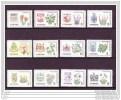 Canada, 1964-1966, Fleurs Et Armoiries Des Provinces, Fleurs, Coat Of Arms, Série Complète, Complete Set - Stamps