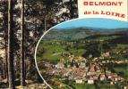 Belmont De La Loire - Multivues (2 Vues) - Vue Générale Aérienne Et Forêt - Edition Cellard - Belmont De La Loire
