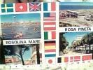 ROSA PINETA VEDUTE  TERAMO  VB1976  FA5819 - Teramo